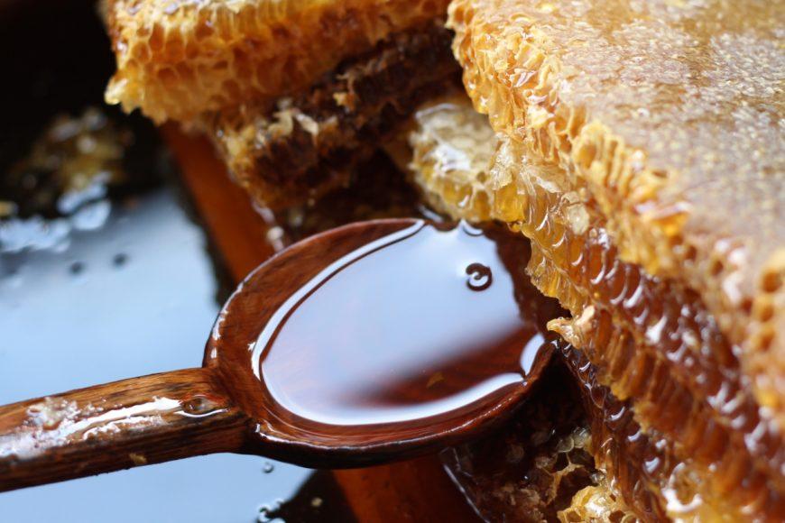Značaj meda u prehrani